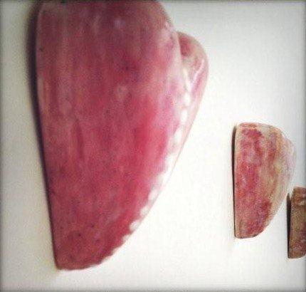 Awall of heartsz expoA kleinriot