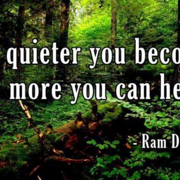 Mindfulness Meditatie Wandeling Tijdens Dag Van De Stilte